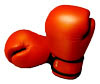 Icon-boxing-gloves